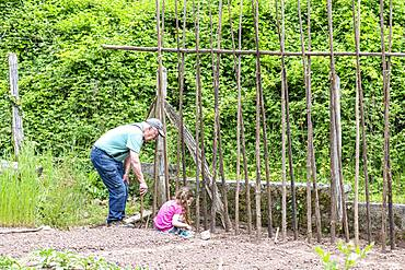 Grandfather Sowing Ream Beans 'Vesperal' with his Little Girls, Spring, Moselle