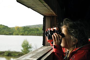 Girl observing birds through binoculars, etang de la Veronne, Etangs du Malsaucy et de la Veronne trail, Sermamagny, Territoire de Belfort, France