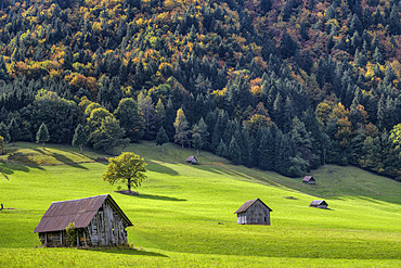 Wooden huts typical of the Chatelard region for storing hay, Savoie, Alps, France
