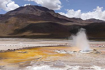 El Tatio geysers, San Pedro de Atacama, Atacama Desert, Chile