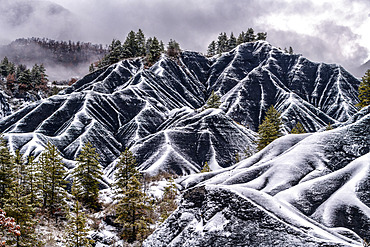 Les Terres Noires de Robine sur Galabre under the snow. Jurassic (Toarcian) marls rich in organic matter, tender and very sensitive to gullying, colonized mainly by Scots pines and forming remarkable reliefs in the Digne Geological Reserve, Alpes de Haute Provence, France.