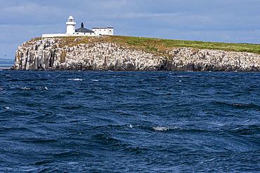 Inner Farne, one of the Farne Islands, England