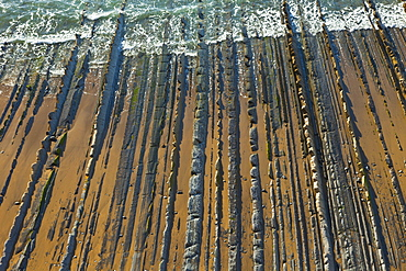 parallel rock formations on sea shore in tidal zone of sea top view outdoors La Rasa Mareal flysch cliffs Basque Country Spain Europe