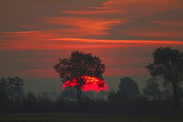 sunrise over marsh lowland autumn mood