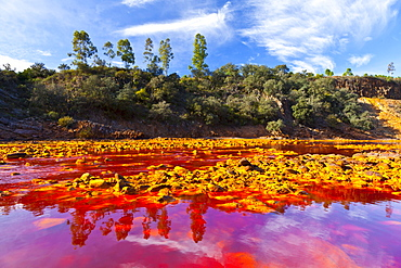 Rio Tinto red river reddish hue due to iron copper and sulfur dissolved in the water habitat with extreme conditions for life forms Andalusia