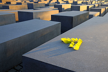 holocaust memorial in sunrise for the killed European jews in second world war Berlin Germany
