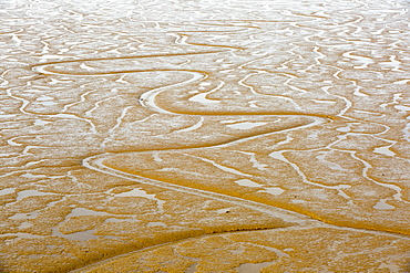 Patterns in the mud flats in the Humber Estuary at Salt End, at low tide, Yorkshire, UK.