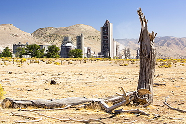 A cement works at Tehachapi Pass California, USA, with drought killed trees in the foreground. Cement production is one of the most carbon hungry industries on the planet, driving climate change and leading to drought.