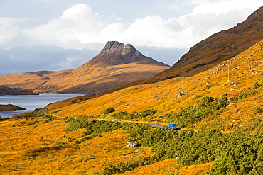 Deer Grass, coloured orange in the Autumn time below Stac Pollaidh in Assynt, North West Highlands, Scotland, UK.