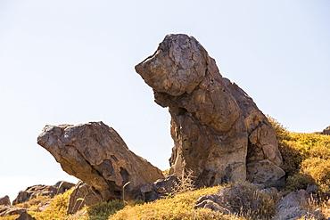 A rock shaped like a sitting Blood hound above Skala Eresou on Lesvos, Greece.