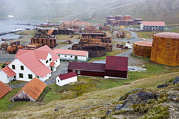 The old whaling station at Grytviken on South Georgia. In its 58 years of operation, it handled 53,761 slaughtered whales, producing 455,000 tons of whale oil and 192,000 tons of whale meat.