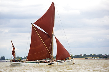 Traditional wooden Smack fishing boats off Brightlingsea, Essex, UK.