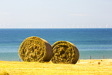 The Walney Offshore wind farm behind hay bales in a field on Walney Island, cumbria, UK.