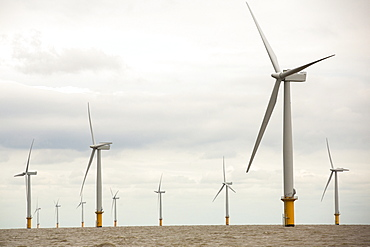 Gunfleet Sands offshore wind farm is owned and operated by Dong energy. It consists of 48 turbines off Brightlingsea in essex, UK, and has a capacity of 172 MW, enough to power 125,000 homes.