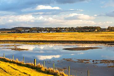 Salt marsh at Cley Next the Sea, North Norfolk, UK.