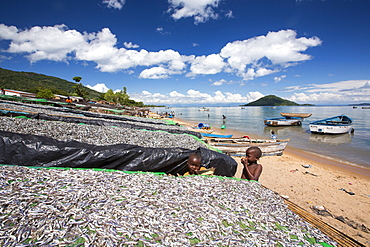 Fish drying racks drying a catch of small fish at Cape Maclear on the shores of Lake Malawi, Malawi, Africa.