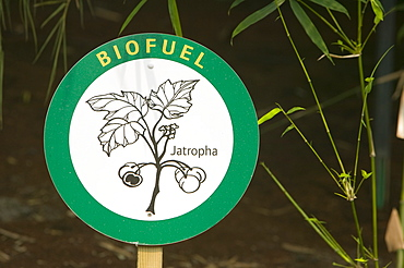 A bio fuel display at the Eden Project, Cornwall, England, United Kingdom, Europe