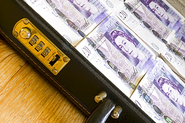 £20 notes in a briefcase