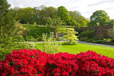 Holehird Gardens, Windermere, Lake District, Cumbria, England, United Kingdom, Europe