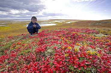 Inuit child on the tundra at the mouth of the Serpentine River near Shishmaref, a tiny island inhabited by around 600 Inuits, between Alaska and Siberia in the Chukchi sea, United States of America, North America