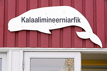An Inuit shop selling seal and whale meat in Ilulissat on Greenland, Polar Regions