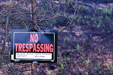 No Trespassing sign in forest after unprecedented fires in 2004, near Fairbanks, Alaska, United States of America, North America