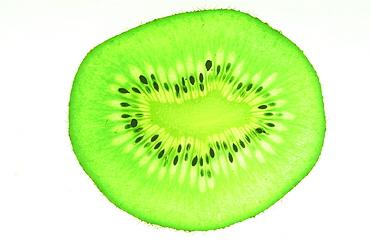 A slice of Kiwi fruit