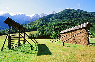 Traditional hay drying racks in the Triglav National Park in Slovenia, Europe