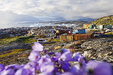 Rubbish dumped on the tundra outside Ilulissat, with icebergs behind from the Sermeq Kujalleq (Ilulissat Ice fjord), a UNESCO World Heritage Site, Greenland, Polar Regions