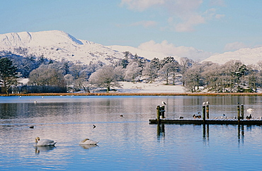 Windermere in snow in the Lake District National Park, Cumbria, England, United Kingdom, Europe