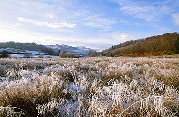 A frosty morning in the Langdale Valley in the Lake District National Park, Cumbria, England, United Kingdom, Europe
