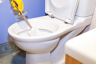 Cleaning a household domestic toilet with a toilet cleaning brush