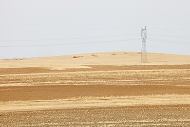 Inner Mongolia has been badly hit with ever drier conditions and creeping desertification due to climate change, China, Asia