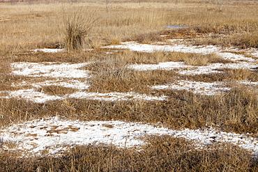 Baked landscape formerly a large lake, now dried up, Hong Hai Zai near Dongsheng, China, Asia