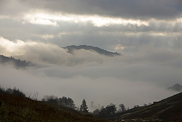 Misty weather over Grasmere in the Lake District National Park, Cumbria, England, United Kingdom, Europe