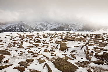 The view from the summit of Cairngorm, Cairngorm National Park, Scotland, United Kingdom, Europe