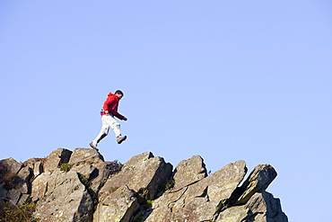 A climber jumping on a ridge above Chapel Stile in the Langdale Valley in the Lake District, Cumbria, England, United Kingdom, Europe