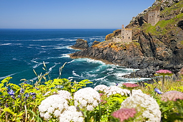 The famous Crown tin mine at Bottallack on the North Cornish coast, now abandoned but its old shafts extend way out below the sea, Cornwall, England, United Kingdom, Europe