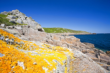 Cornish coastal scenery near Lamorna Cove, Cornwall, England, United Kingdom, Europe