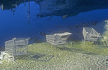 Supermarket trolleys thrown into Whitehaven harbour by vandals, Cumbria, England, United Kingdom, Europe