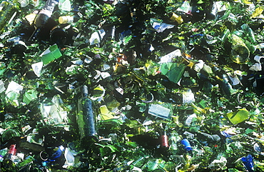 Glass at a recycling plant in Carlisle, Cumbria, England, United Kingdom, Europe