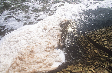 Pollution on the River Mersey near Warrington, Lancashire, England, United Kingdom, Europe