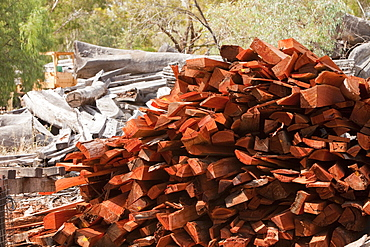Red gum timber at a timber yard on the outskirts of the Barmah forest near Echuca, Victoria, Australia, Pacific