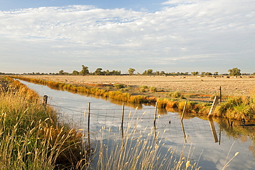 An irrigation ditch near Echuca, Victoria, Australia, Pacific