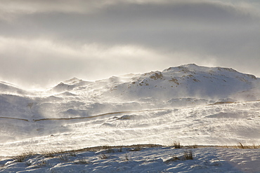 Wansfell on the side of Kirkstone Pass with snow and spindrift being blown across the hill side, Lake District, Cumbria, England, United Kingdom, Europe