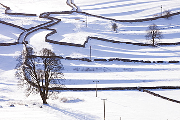 The Yorkshire Dales near Settle, covered in snow, Yorkshire, England, United Kingdom, Europe