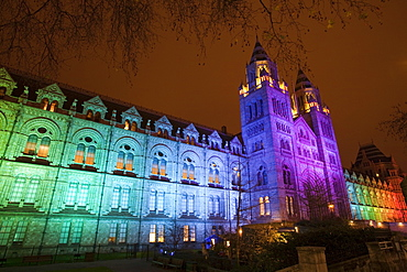 The Natural History Museum illuminated at night in South Kensington, London, England, United Kingdom, Europe