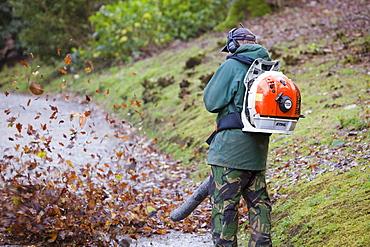 A gardener using a leaf blower in a garden, United Kingdom, Europe