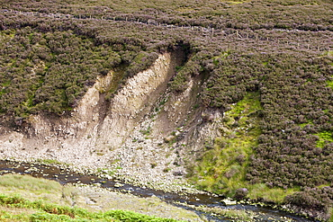 Eroded river bank in the Trough of Bowland, Lancashire, England, United Kingdom, Europe