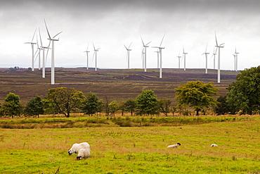 Black Law windfarm near Carluke in Scotland, United Kingdom, Europe